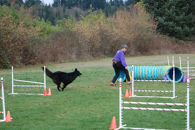 Agility Again At Last! - Feb 2011