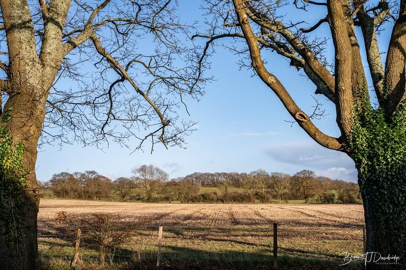 Walk to Oldland Mill-1289.jpg