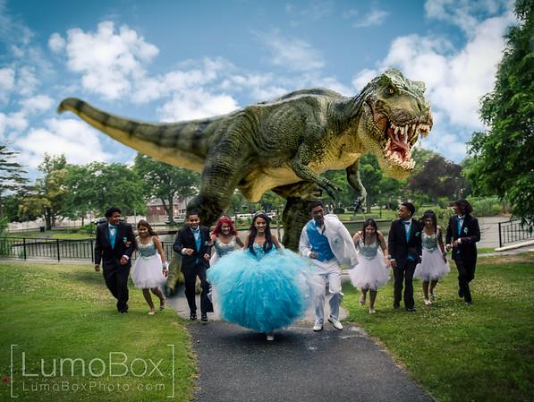 Dinosaur Photos Lumobox