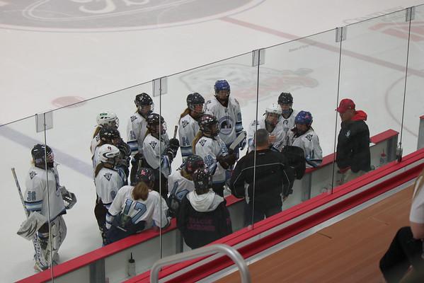 U16 Nordiques AAA Hockey 2012