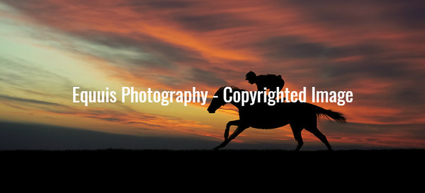My Homepage Slideshow