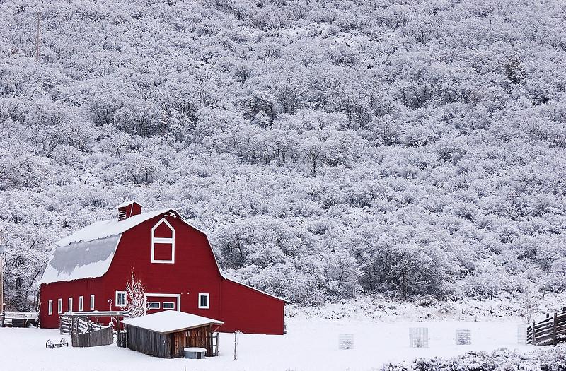 RedBarn&Snow.jpg