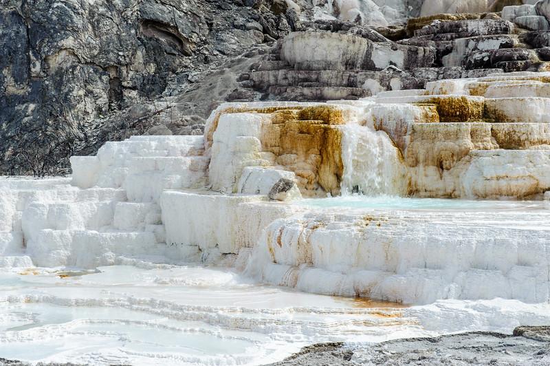 20130511-12 Yellowstone 112.jpg