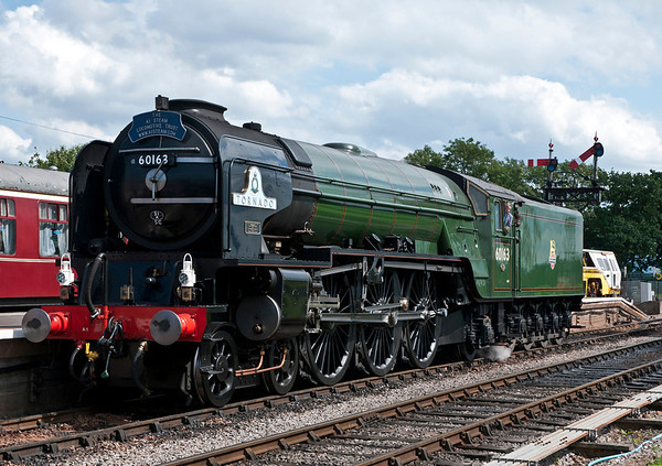A1 Tornado and T9 30120 in steam