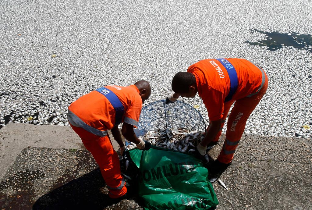 . Municipal workers collect dead fish at the Rodrigo de Freitas lagoon in Rio de Janeiro, March 13, 2013. REUTERS/Sergio Moraes