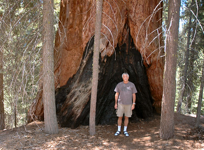 Sequoia & Kings Canyon Summer 2007