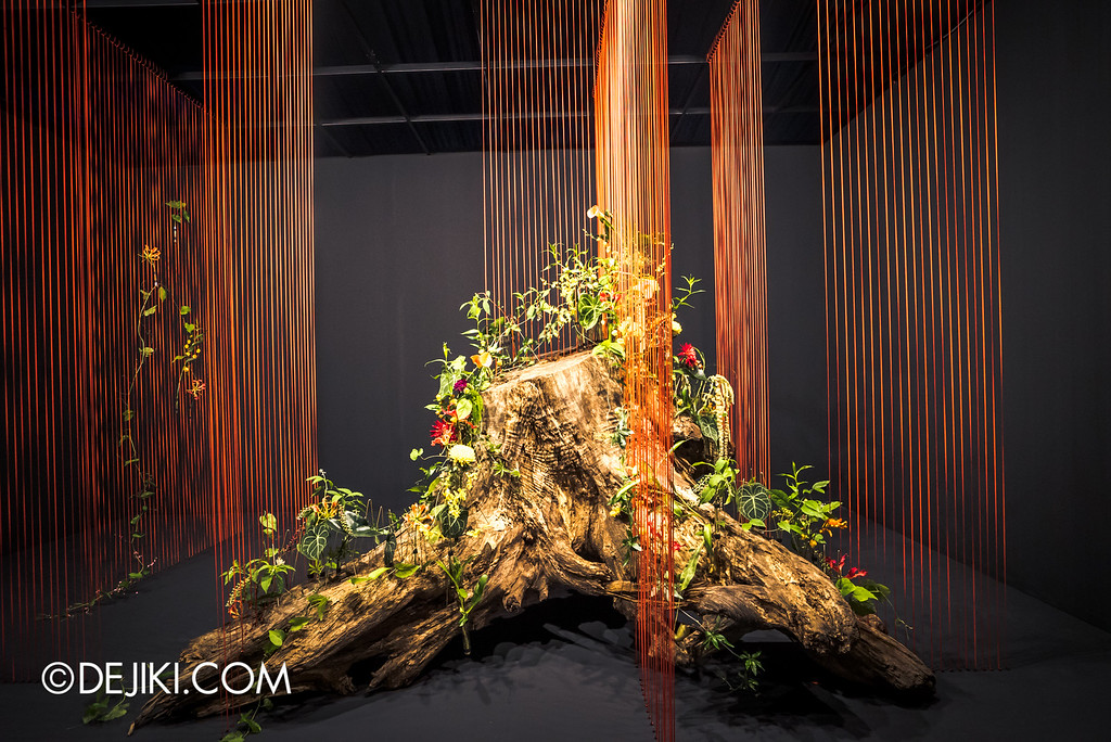 Singapore Garden Festival 2016 -Singapore Garden Festival 2016 - Floral Windows to the World 5