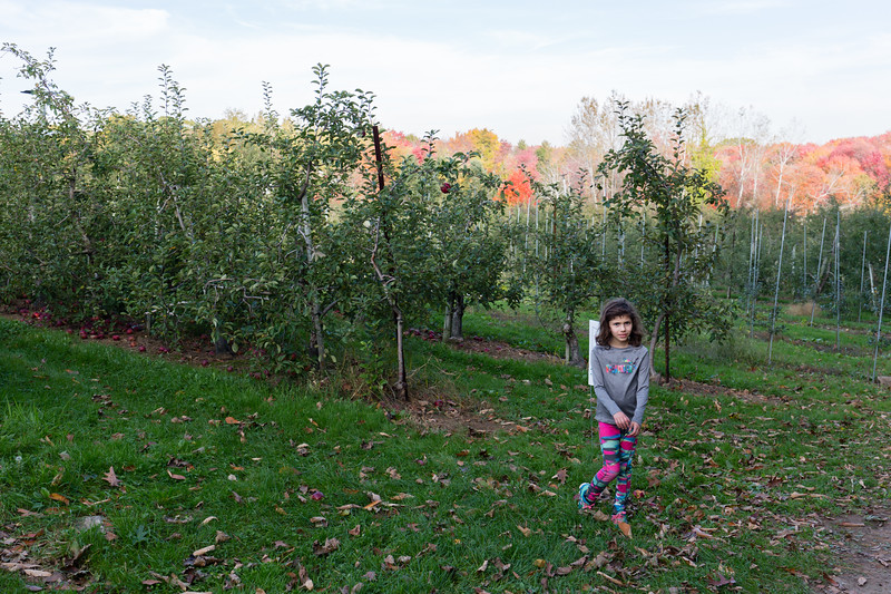 20171022_Apple Picking and other Fun_0087.jpg