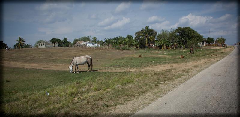 Cuba-Trinidad-IMG_2159.jpg