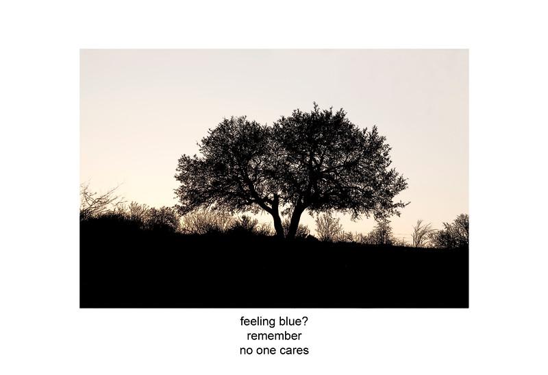 2009-03-29 Llano tree at sunset poem.jpg
