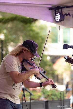 Bluegrass, Beer and Barbecue by Brandi Hill