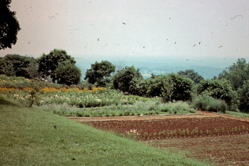 View from Monticello gardens across valley.