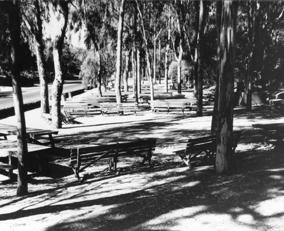 1950, Picnic Area