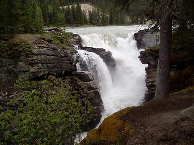 Calgary & Jasper, AL - June '05