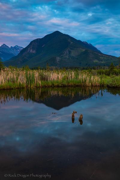 Banff_June-15x.jpg