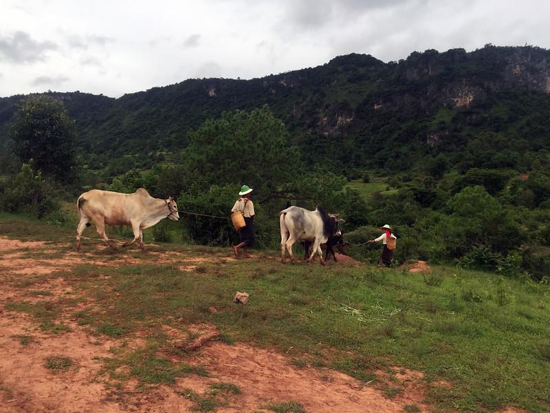 Southeast Asia adventures Hike Kalaw to Inle Lake Myanmar