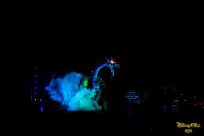 Disneyland November 2013