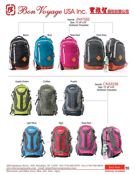 BackPack p102-X2.jpg