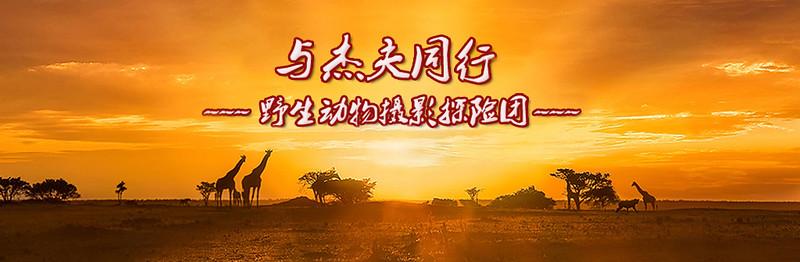 tour chinesea.jpg