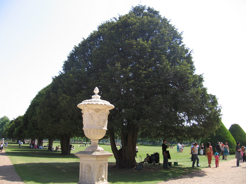 The gardens of Hampton Court Palace