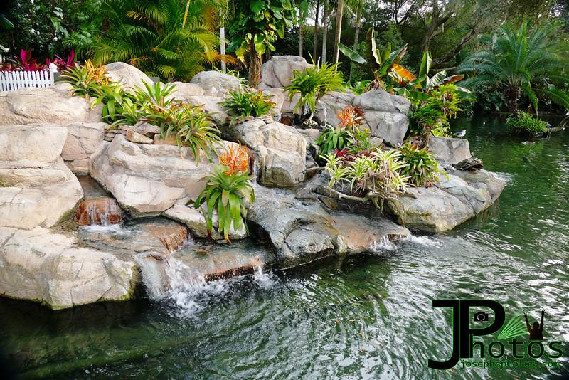Busch Gardens - 4.jpg
