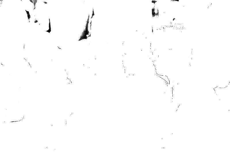 DSC05447.png