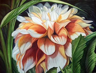 Crowned Dahlia