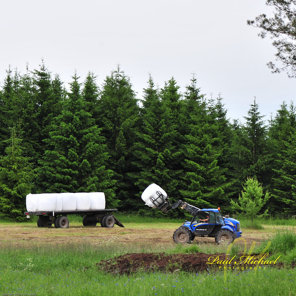 Gathering Hay bales to take back to farm.