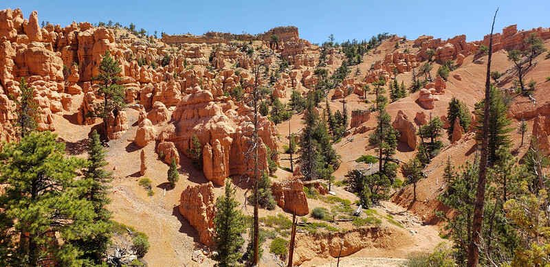 Bryce - Red Canyon