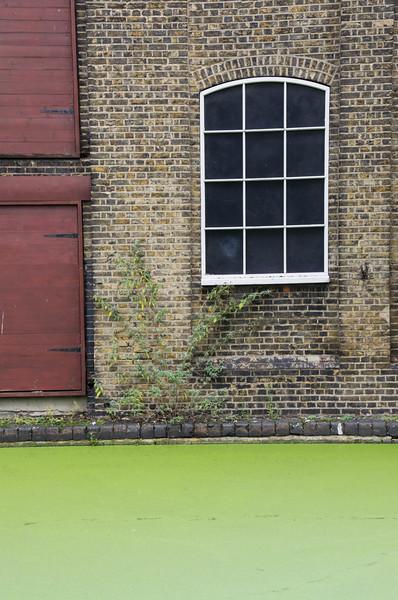 Canal with green algae