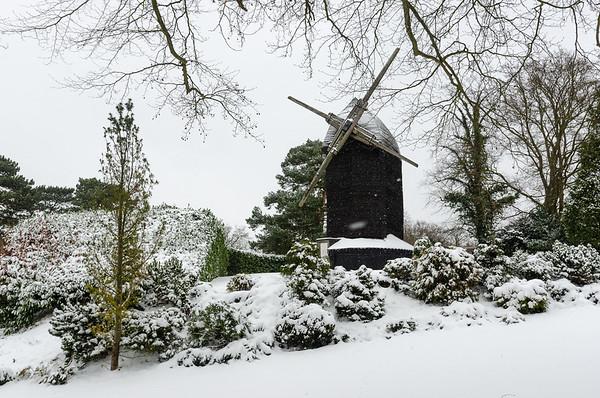 Keston Snow Feb 2021
