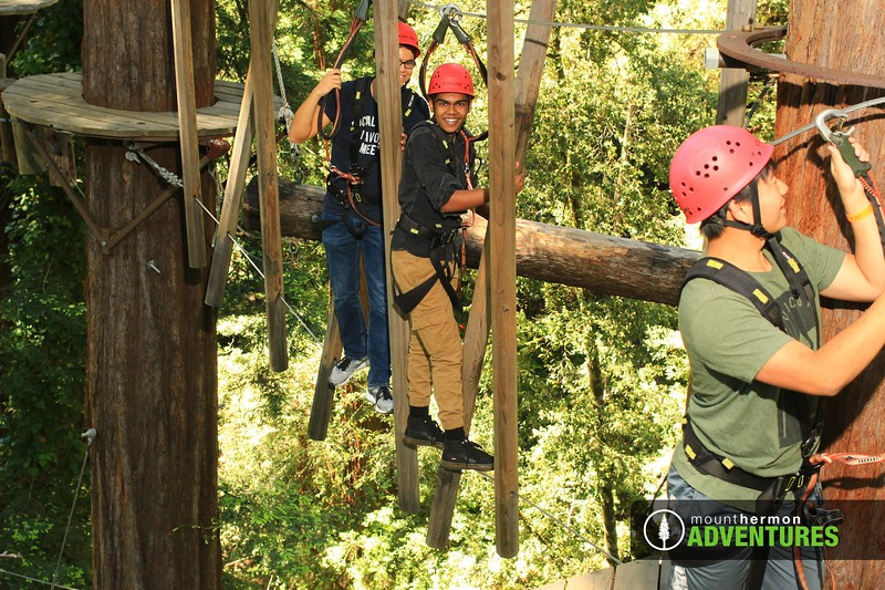 sequoiaportrait_1559083335110.jpg