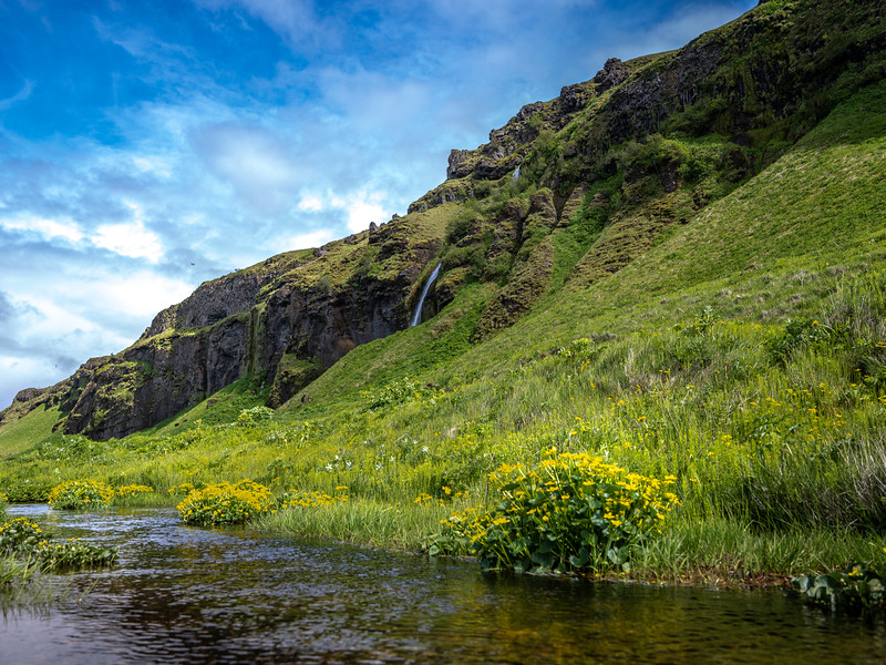 Stream at the Bottom in Iceland    Photograhy by Wayne Heim