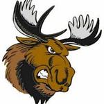 Maine Moose Hockey 2019-2020 Season