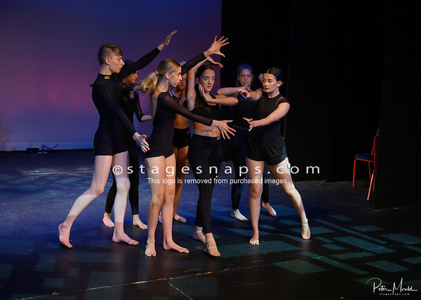 SHOWCASE PERFORMANCE COMPANY