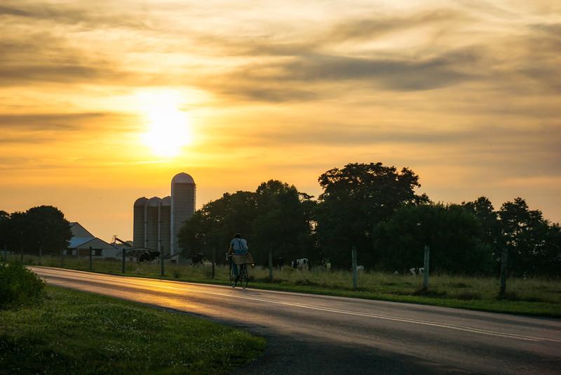 sunset - mennonite bicycling at sunset (p).jpg