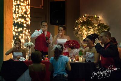 Amber & Mike's Wedding - Elwood, IN - 14June08