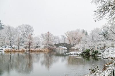 Central Park Snow 2013