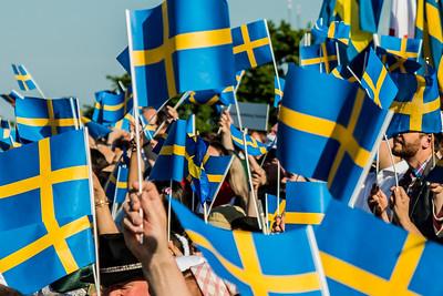 Sveriges Veteranförbund