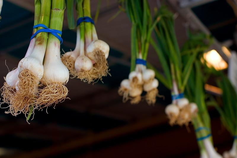 hanging-green-onions_2520472351_o.jpg