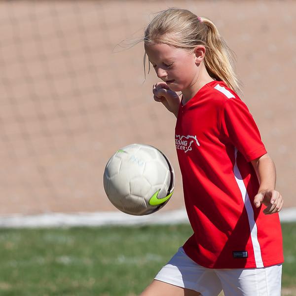 Phoenix Soccer Sept. Oct. Nov. 2015