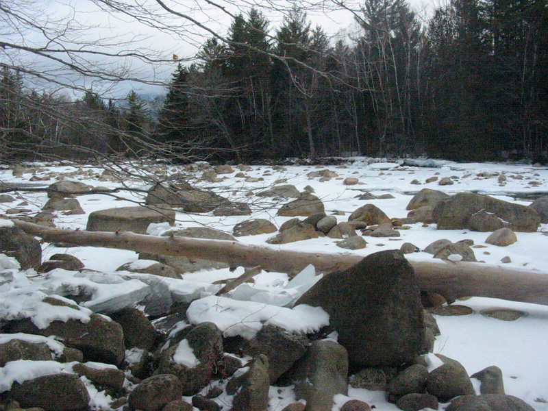 Log and rocks on the E. Branch