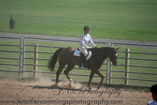 Youth - 14-18 - Equitation, Pleasure, Show Hack