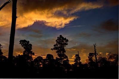 JUPITER FLORIDA SUNRISE