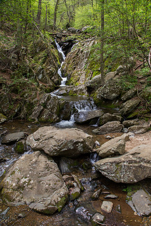 Dark Hollow and Rose River Falls, May 2014
