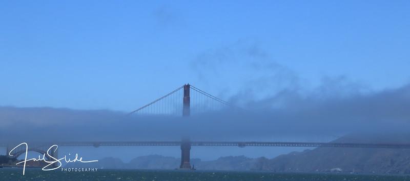 San Francisco 2018 -49.jpg