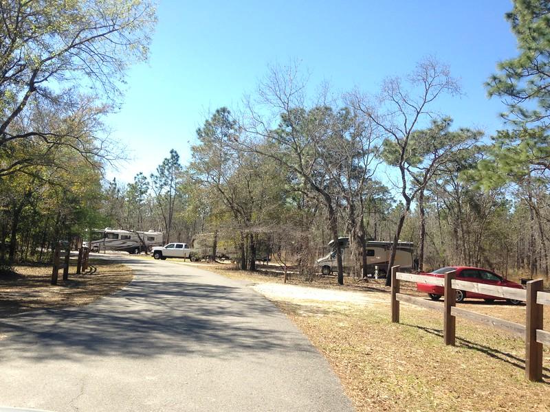 Sandhill Camping Area.JPG