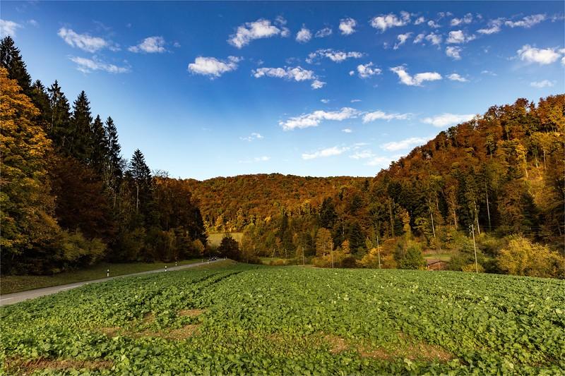 2016-10-22 Herbststimmung Aargau 0U5A1376.jpg