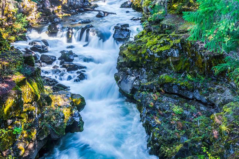 Rogue River-2.jpg