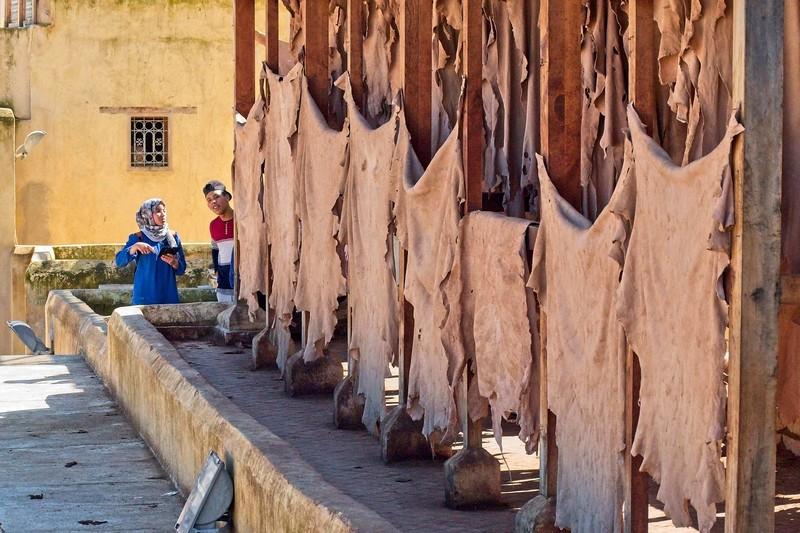 tannery  fez morocco 2018 copy7.jpg